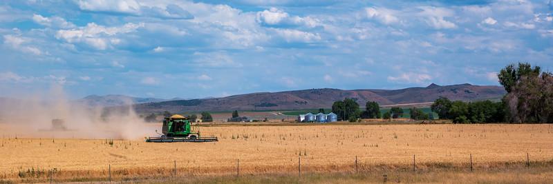 Grain Harvesting Near Pocatello, ID