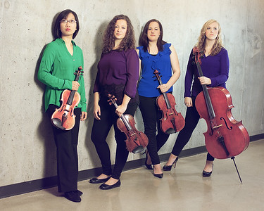 The Pavo String Quartet