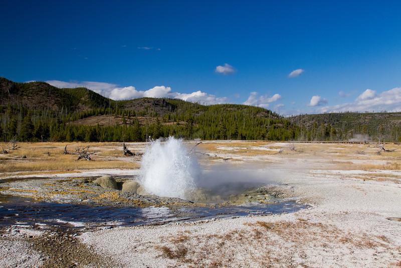 Yellowstone2 407-Edit.jpg