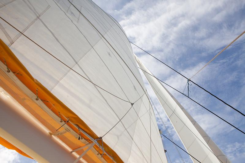 Scoobi Too sails