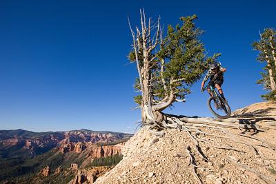 Chris Van Dine - Blowhard trail, UT