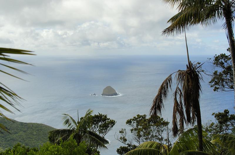 Lord Howe20080509 124026.jpg