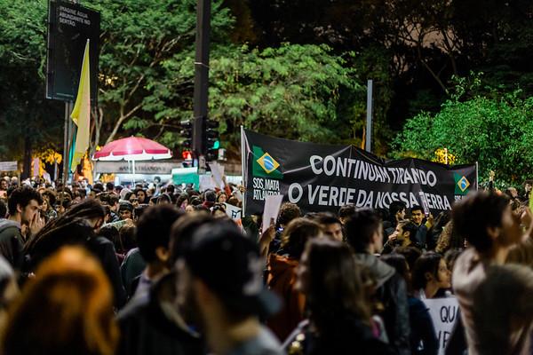 Manifestação pela Amazônia
