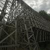 Bridge Capture NX-D 1.0