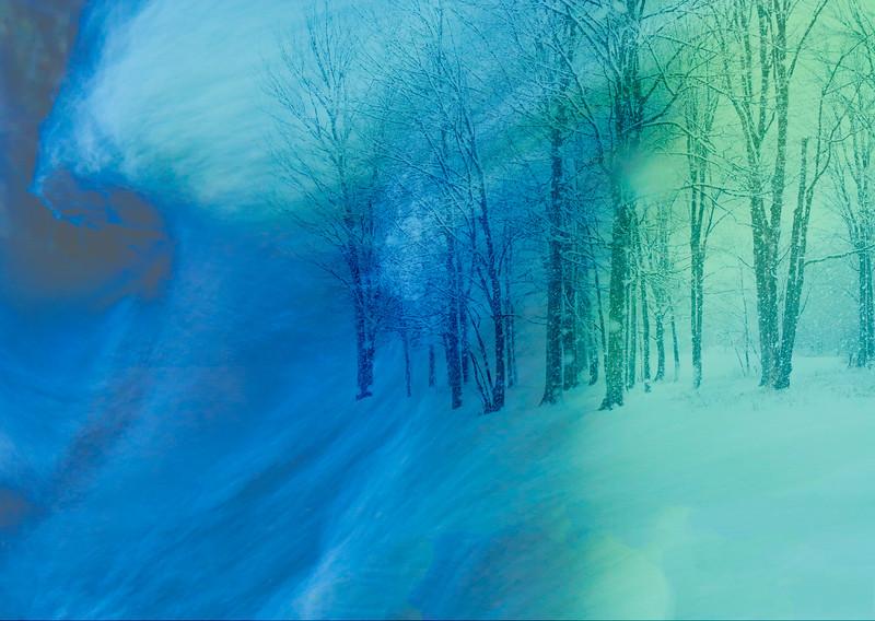 Snow storm_Dec 21-2012_03-Edit.jpg