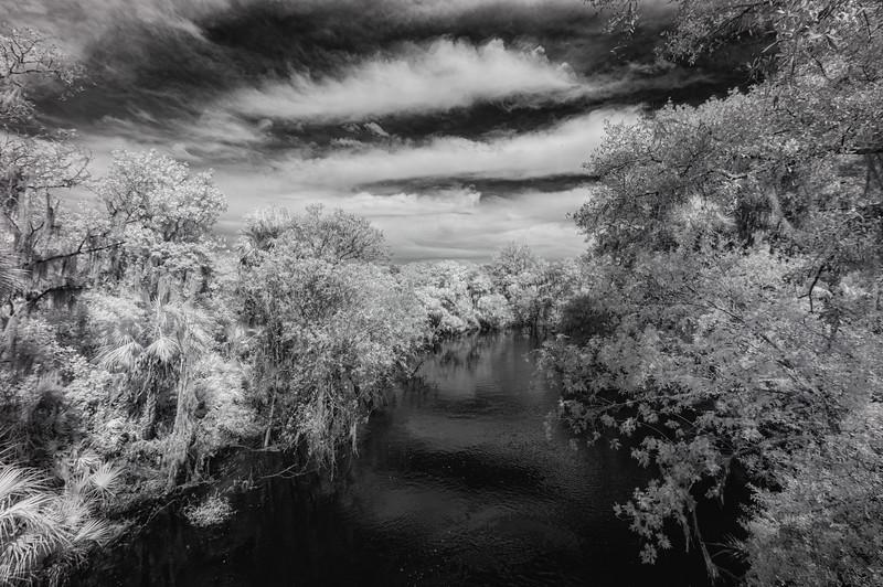 Aldermans Ford Conservation Park- Lithia, Florida