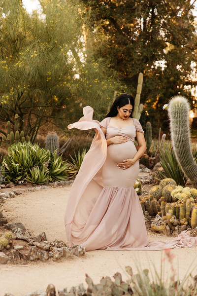 Randeep Maternity Session-15.jpg