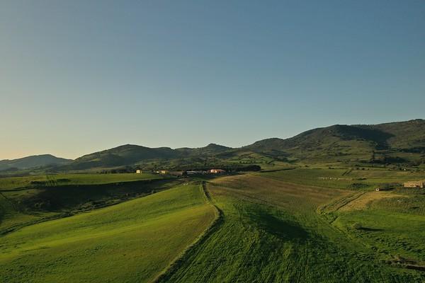 Drone - Ovini - pecore - tramonto - Bovini - Bue rosso - Modicana - Ovile - Nuraghe Nieddu Codrongianos - 28.03.2021