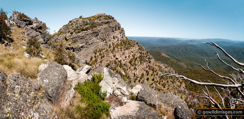 View of Mt Cobbler summit, with Rose River and King Valley beyond