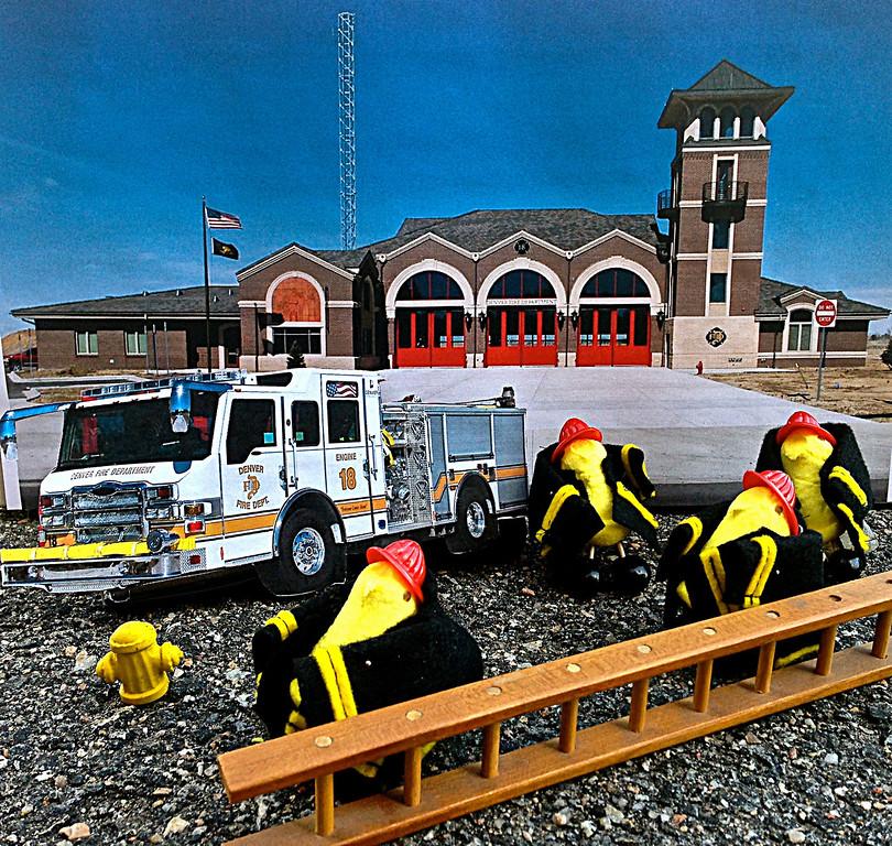 . Saira Mendoza-Chavez Denver Fire Department/Department of Safety Cadet Age 21