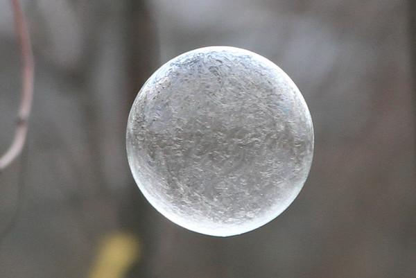 Bubbles 2016