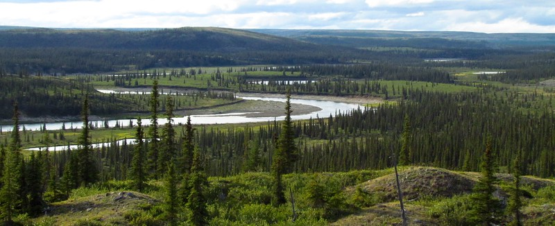 Horton River wanders back & forth between low hills as it flows north.  After dinner we'd hike up one to look around whenever we had time.