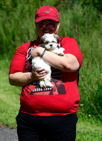 9/1/2018 Mike Orazzi | Staff Melissa Mertz holds Rocket, 10 months, during the Bow Wow in the Park held at Rockwell Park in Bristol Saturday.