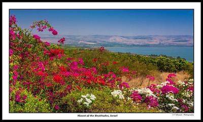 Israel the Beautiful