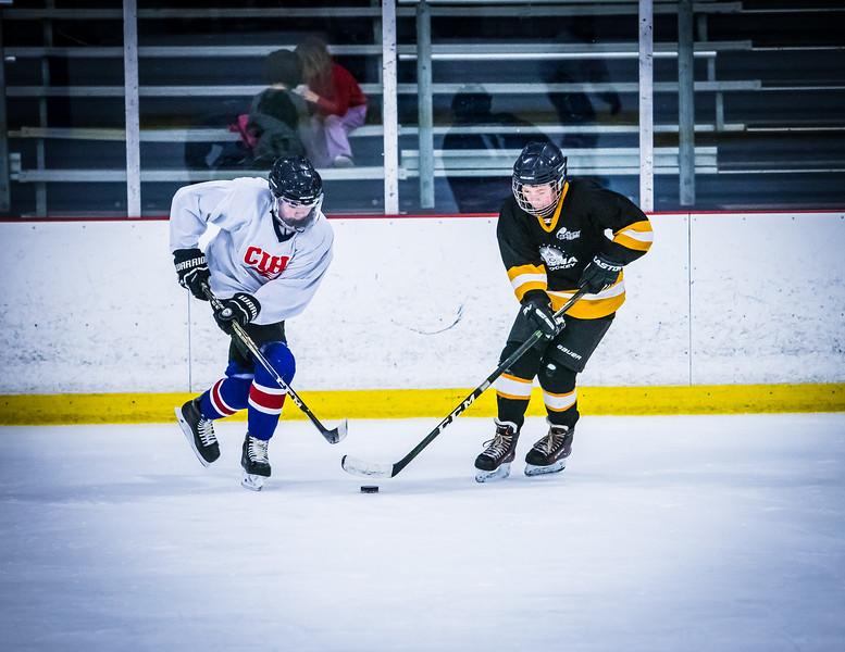 Bruins2-455.jpg