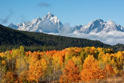 Fall at Tetons