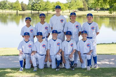 Cubs Team Pics 2017