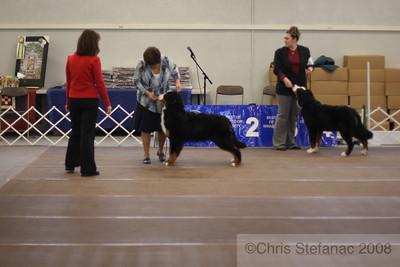 Puppy Dog 6-9 mos-PV 09