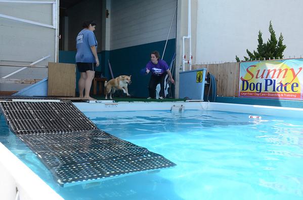 Pool 6 May 2012