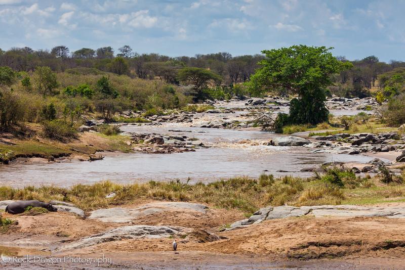 North_Serengeti-31.jpg