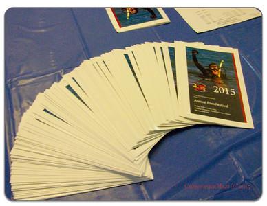 2015 LIDA Film Festival