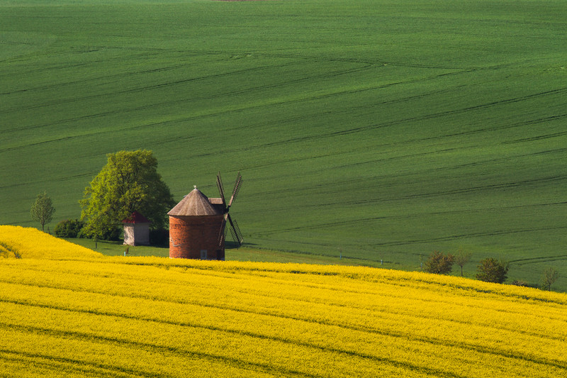Moravian Holland
