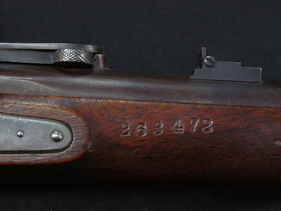 1841 Mississippi Rifle