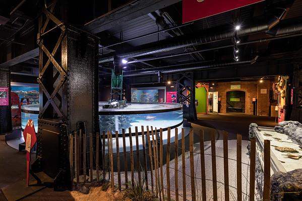 9.23 Aquarium Space & Aquatics shoot