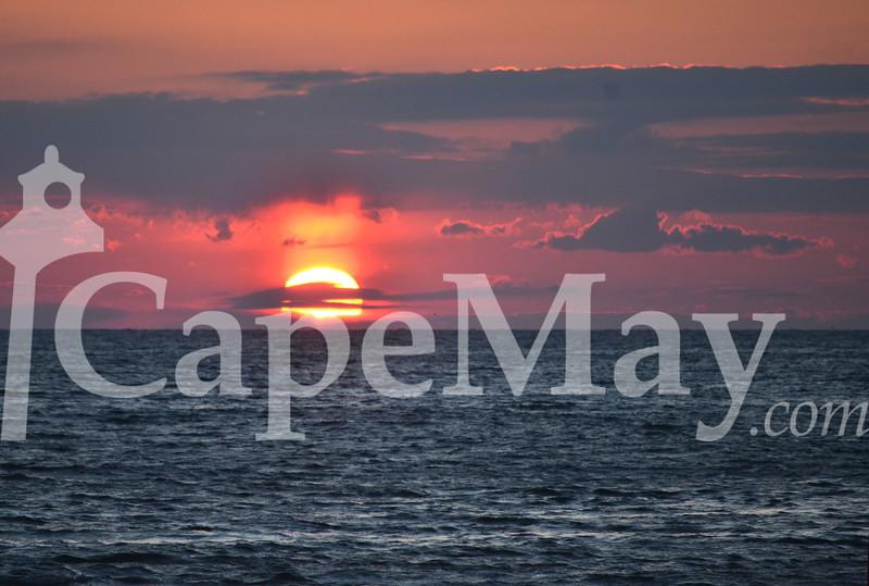 Mar4-2012.jpg
