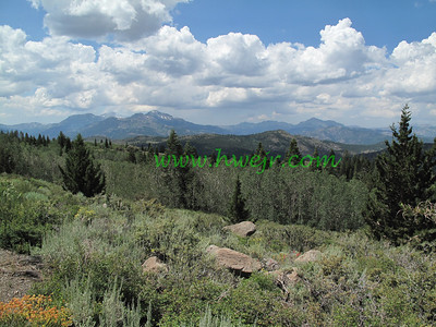 Nevada - August, 2010 - 2