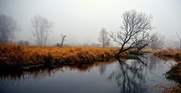 Sun Prairie in fog
