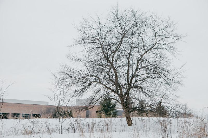 AVS_EcoPreserve_Winter2021-22.jpg