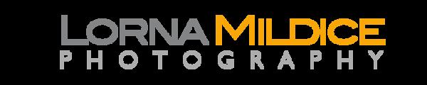 logo20d-2.png