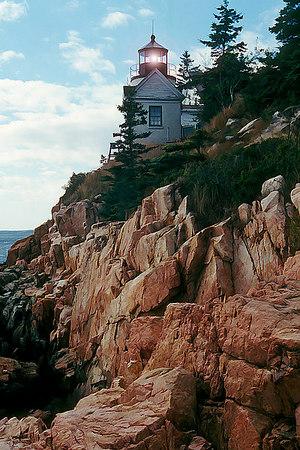 Buzzing Around New England