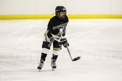 Gm 070 Sun 310pm NH1 Squirt Bisons vs Penguins