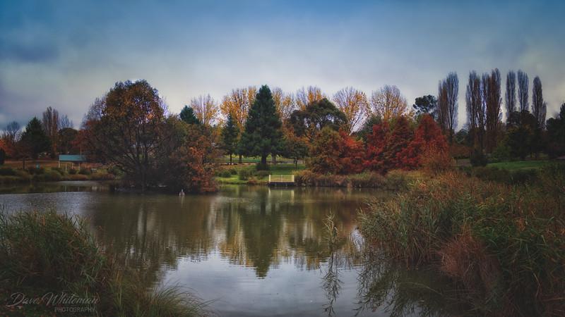 Oberon Common in Autumn