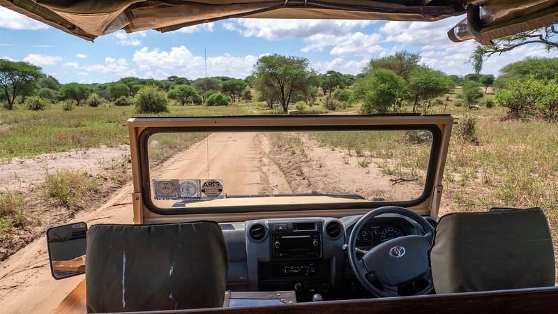 Tanzania-Tarangire-National-Park-Safari-12.jpg