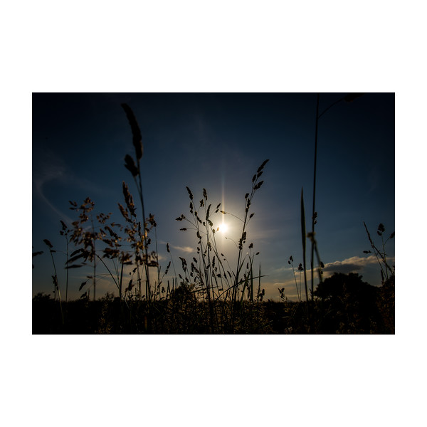 171_Sundown_10x10.jpg