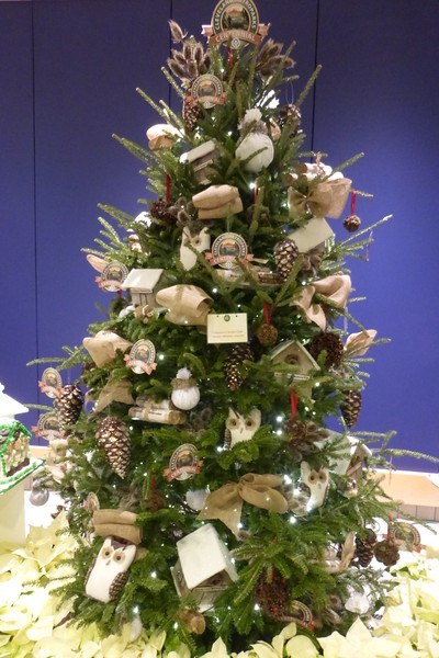 Cleveland Metroparks Tree by the Chippewa Garden Club