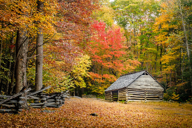 19th Century Cabin in Great Smoky Mountain National Park