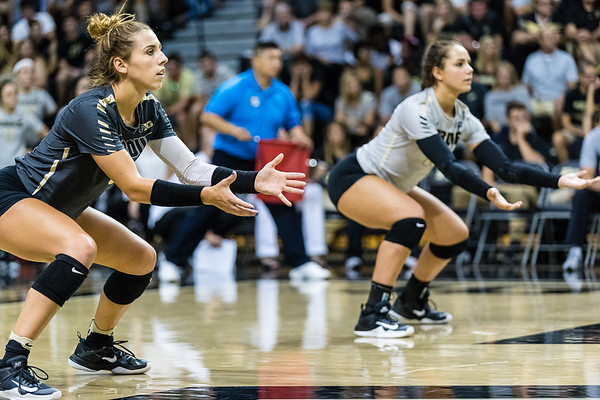 Purdue Volleyball vs Cleveland State 2017-8-25