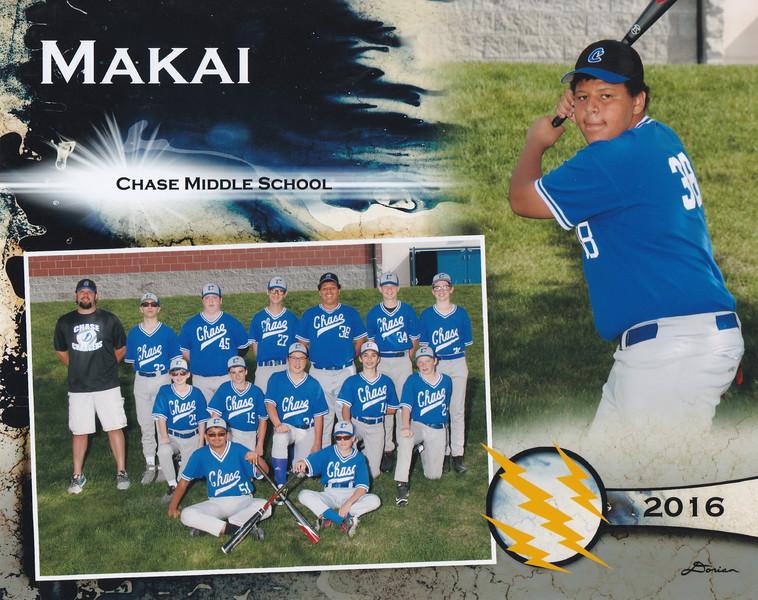 Baseball 2016.jpg