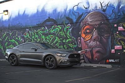2015 Mustang / 2007 R6 (02.15.15)