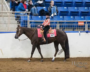 55 Western Pleasure Horses Jr