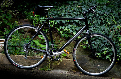 Specialized Carbon Bicycle