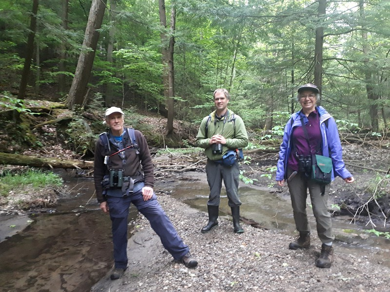 John Geale, David Geale & Jenny Jackman in Area 5 - Photo by Jenny Jackman