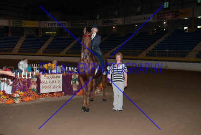 2013 Fall Charity Horse Show Sep 8th PM