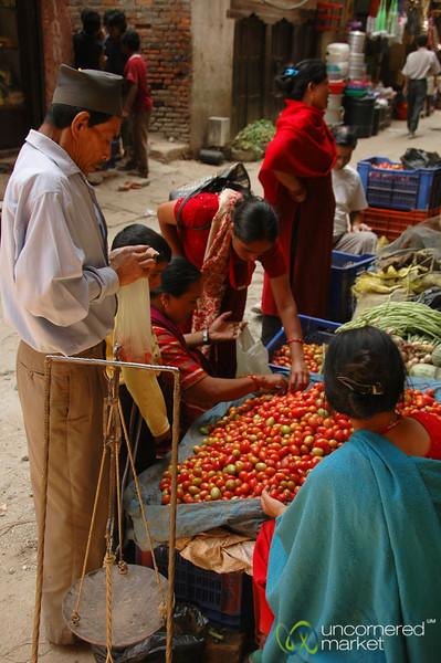 Sorting Tomatoes - Kathmandu, Nepal