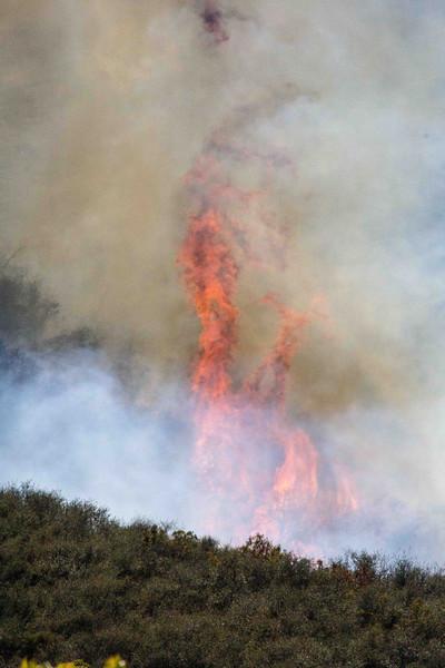 Camarillo Creek Fire (24).jpg