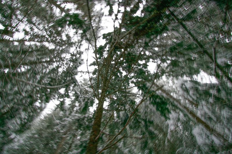 winter 2013-0306.jpg